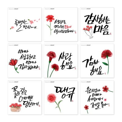 카네이션 꽃 켈리그라피 메세지 카드 택1