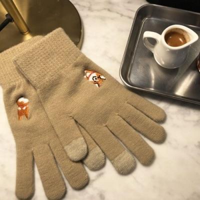 happy corgi gloves 해피 코기 장갑