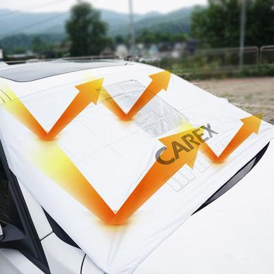 카렉스 블랙박스 촬영가능 앞창가리개