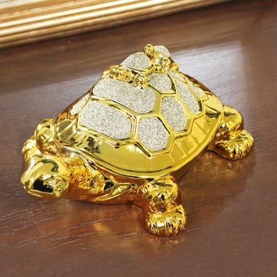 (kcrz078)키다리 골드 새끼업은 거북이