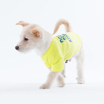 [스니프 X 오보이] 캠페인 베이직 티 (레몬)