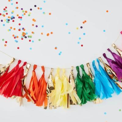 레인보우 테슬 가랜드 Rainbow Tassel Garland GR