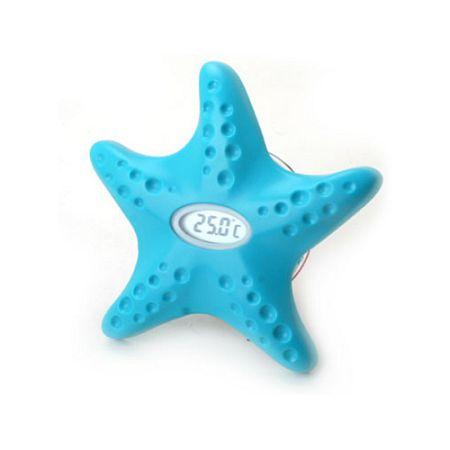 스타피쉬-star fish