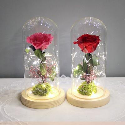 한 송이 장미 유리돔-프리저브드플라워