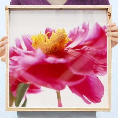 cd744-우드프레임액자_재물운높여주는모란꽃(중형)
