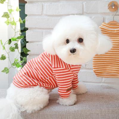 가을줄무늬 티셔츠