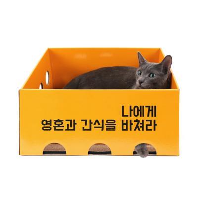 [노리노리캣] 카펫 스크래쳐 박스 (오렌지)
