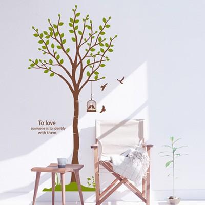 dc095-자작나무_숲의 하모니