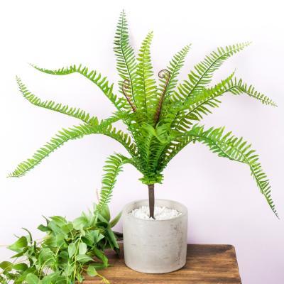 조화 트로피칼 화이트 스톤 나무