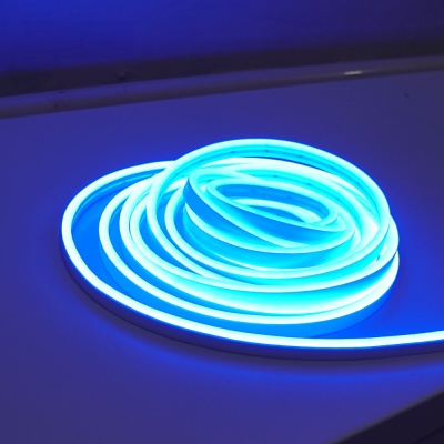 LED 로프라이트 (줄/띠형 5m 블루) DC전원 LCBB220