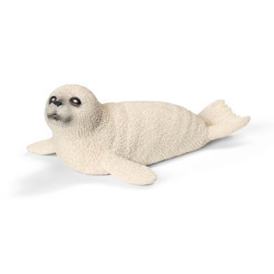 새끼 바다표범