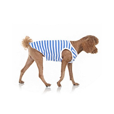 blue stripe sleeveless
