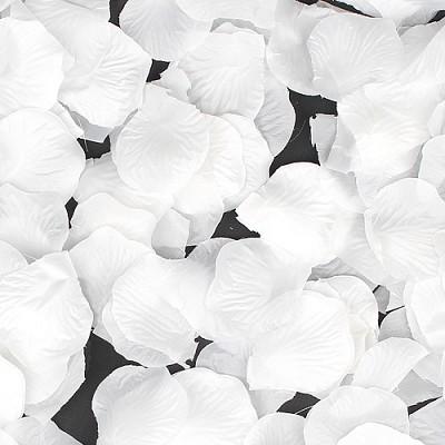 프로포즈 이벤트 꽃잎 (화이트)
