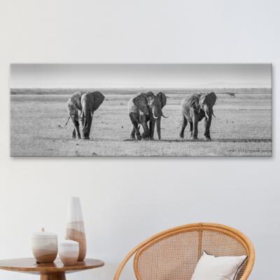 cq150-코끼리친구들_대형노프레임