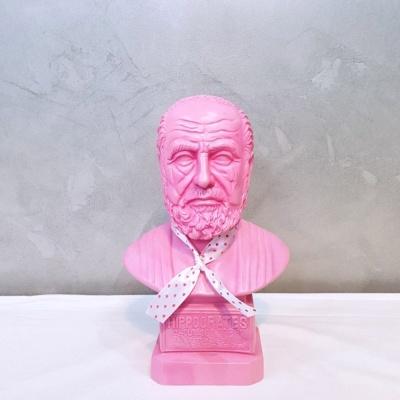 핑크 컬러 히포크라테스 중형 석고상 화분 35cm 내외