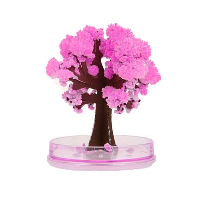 미니 요술 벚꽃 11cm