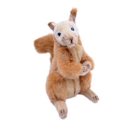 [가격인하] 4349번 붉은다람쥐 Squirrel Red Sitting (Ankara)/30*23cm