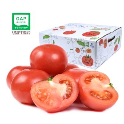 달향토마토 로얄과 5kg / GAP인증토마토