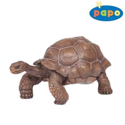갈라파고스 거북이