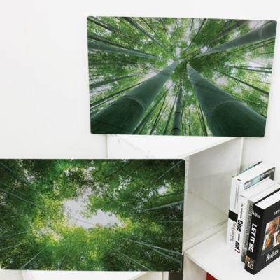 cl747-폼아크릴액자58CmX38Cm_울창한대나무숲
