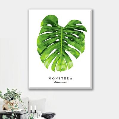 [ DIY 명화그리기 ] 40cm*50cm 보태니컬 몬스테라1