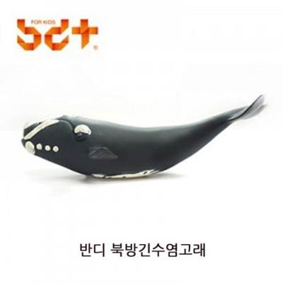 반디 북방긴수염고래 1P 모형장난감 장난감 어린이