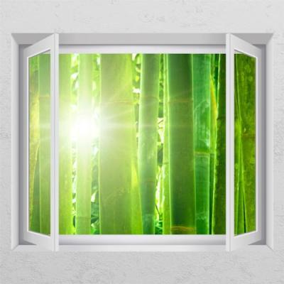 cr793-햇살이비추는대나무숲_창문그림액자