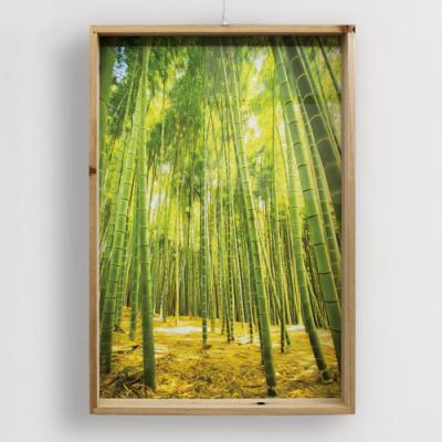 pf799-우드프레임액자_울창한대나무숲(세로)