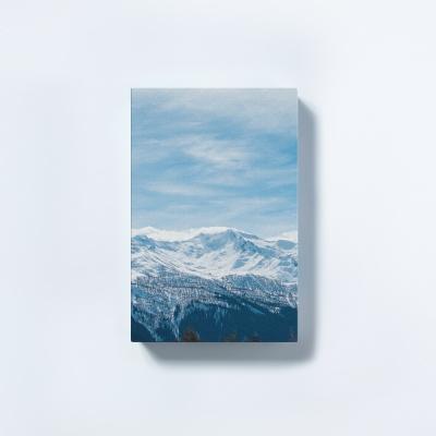 [타이드] 인테리어소품 캔버스액자 스노우 블루마운틴1