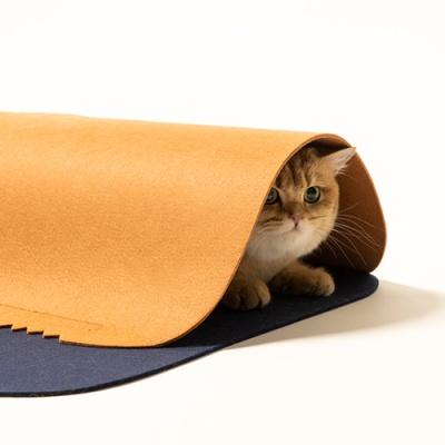 [피단] 펫큐브 고양이 놀이터 + 캣닢가루1p증정
