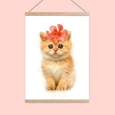 플라워포켓 고양이 + 행잉프레임 세트