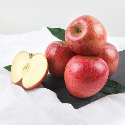 [초록자연] 사과 10kg(21-25과)