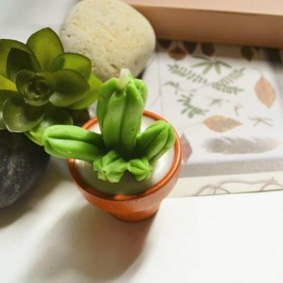 수제 천연 선인장모양 캔들 3개세트 (토분화분)