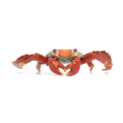 261729 갈라파고스붉은게 동물피규어