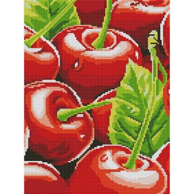 빨간 체리 (캔버스형) 보석십자수 30x40