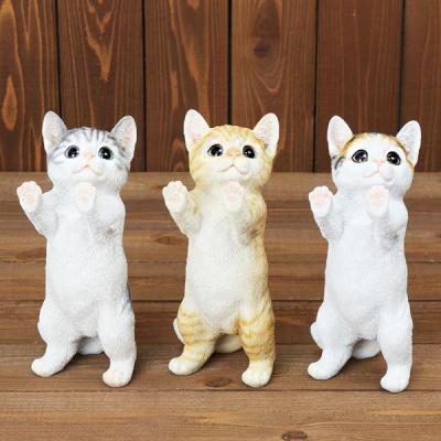 창 밖 구경 고양이 (3컬러)