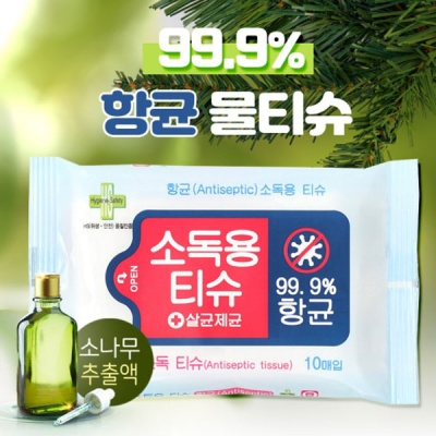 [유한그린텍] 손 소독티슈(30매x10팩)