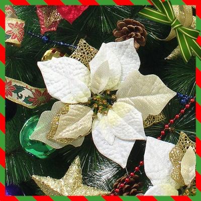 2p 크리스마스 포인세티아(골드) (大) (21cmx23cm)