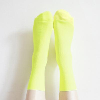 [SET] Good Golgi Socks 2qty