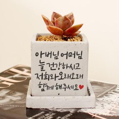 [오래오래 함께해주세요] 캘리그라피 화분