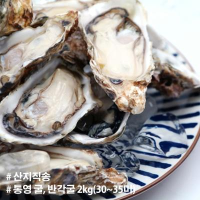 산지직송 경남 통영 굴 반각굴 2kg 30~35미