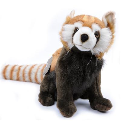 3579번 레드판다 Red Panda/36cm.L