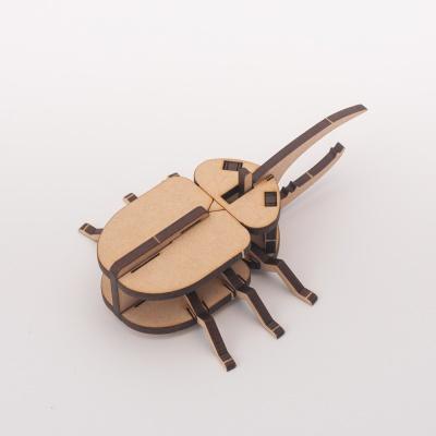 [DIY 헤라클레스 장수풍뎅이 만들기] 집콕놀이 키트