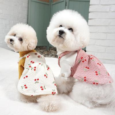 강아지겨울원피스 고양이원피스 앵두원피스