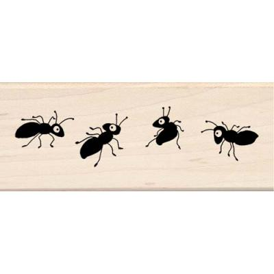 우드스탬프 ANTS IN A ROW