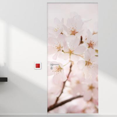 tm732-벚꽃이피는계절_현관문시트지