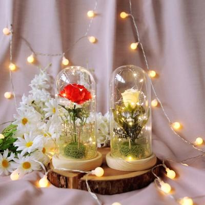LED 플라워 유리돔 장식 - 카네이션
