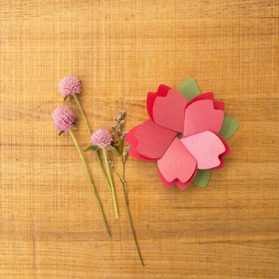 벚꽃카드(3color)