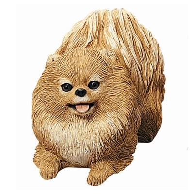Pomeranian(포메라니언)_OS353
