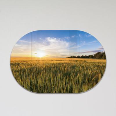 pj231-폼아크릴액자58CmX38Cm타원_재물운의보리밭풍경